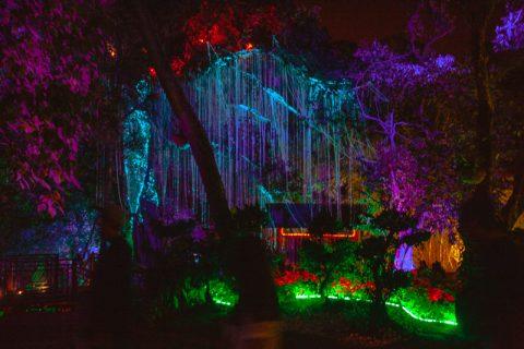 LN2018_Penang-Avatar-Garden-8077